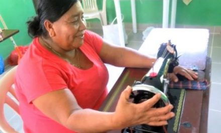 Sewing Machines and Equipment – La Ensenada